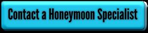 TravelHutHoneyMoonSpecialist